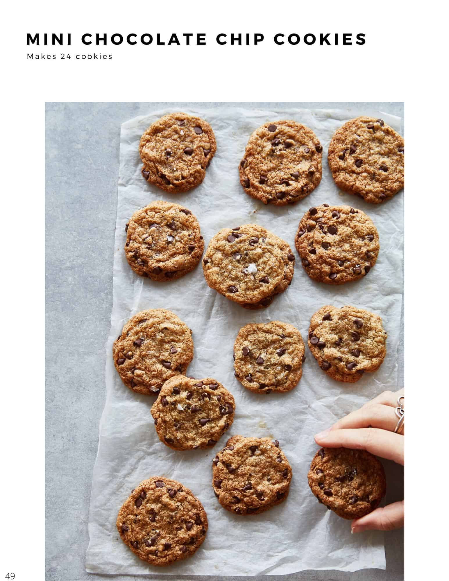 30 minute plant based recipes chocolate chip cookies