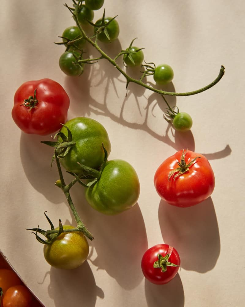 overhead image of mixed tomatoes on a white background